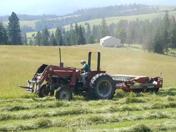 Mowing hay at SkyLinesFarm
